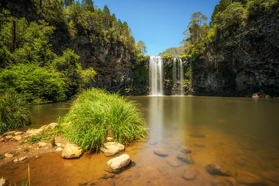 Dangar Falls in the Rainforest of Dorrigo National Park, Australia