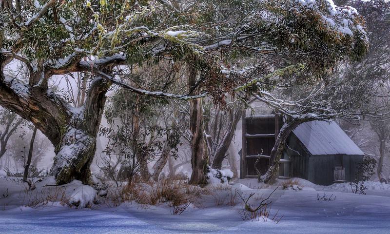 AULA0810 Winter Wonderland
