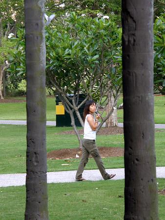 Brisbane Botanic Gardens - November 2007