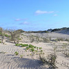 Cable  Beach dunes