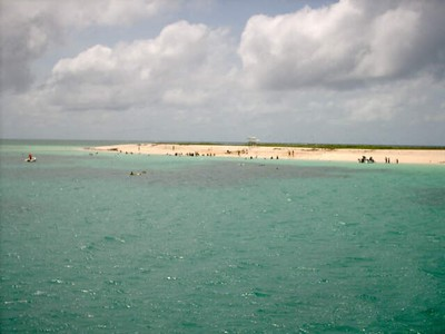 Michaelmas Cay, from boat