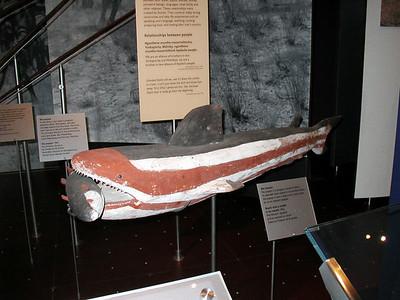 08  Australia National Museum