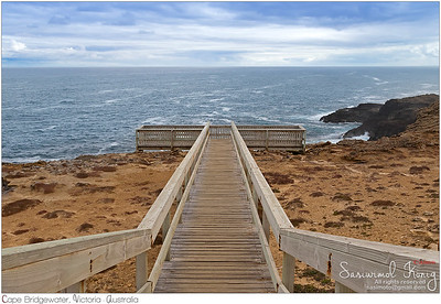 Wooden path to the Blowholes viewpoint