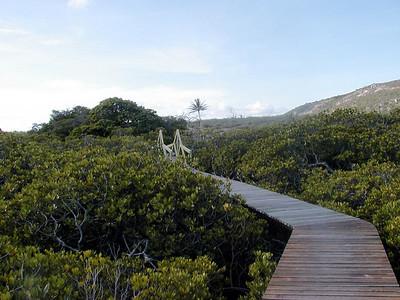 21   Lizard Island Walk