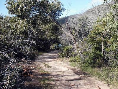 15   Lizard Island Walk