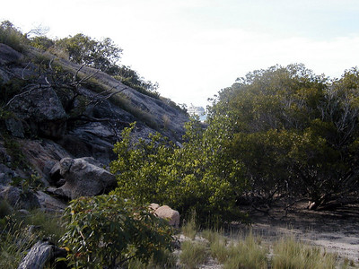 18   Lizard Island Walk