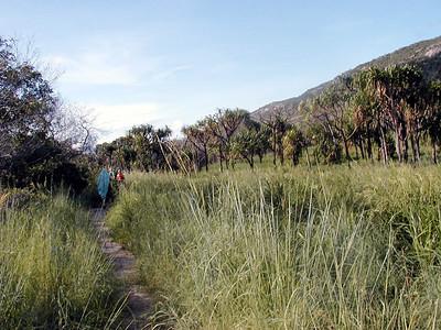 16   Lizard Island Walk