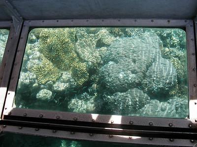 10  Ribbon Reef No  5