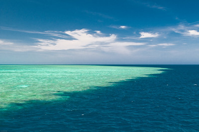 GreatBarrierReef. Wonderful color.  Very different place in the Coral Sea
