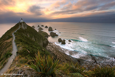 Morning Glory, Nugget Point, South Island, New Zealand