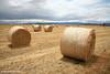 Hay Bales, North East Tasmania