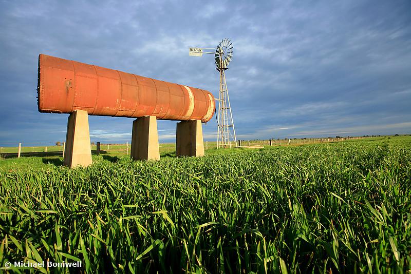 Wheat & Windmill, Central Victoria, Australia