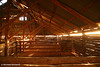 Dawn penetrates the Shearing Shed, NSW Outback