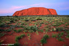 Ayers Rock (Uluru), Sunset deepens the naturally red rock, NT, Australia