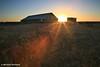 Shearing Shed Sunrise, NSW Outback