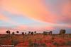 Sunset sweeps a desert plain, NT, Australia