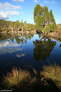 Cradle Mountain Tarn Reflections, Tasmania. 2007.