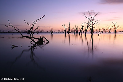 Lake Victoria Pre-Dawn, NSW, Australia