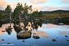 Tarn Reflections, Cradle Mountain National Park, Tasmania