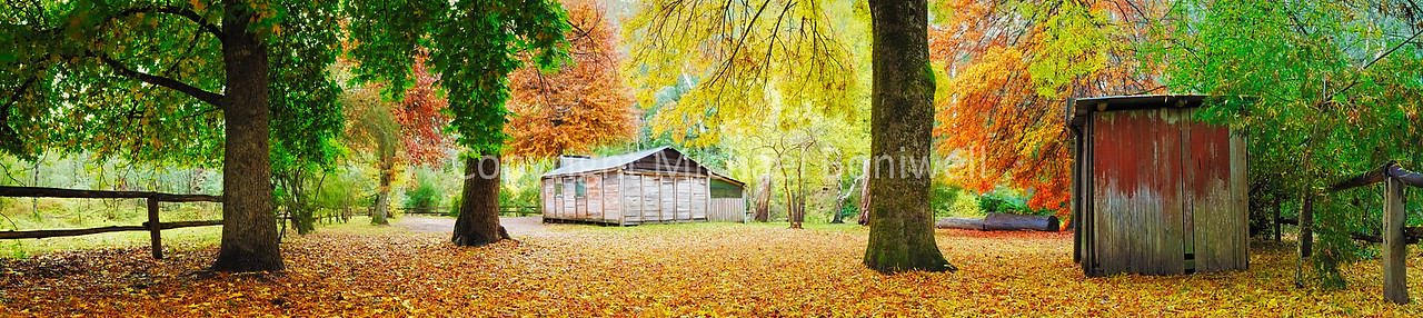 "Pickerings Hut, Howqua Hills, Victoria, Australia. Can be printed several metres wide. <a href=""mailto:michael.boniwell@trendlogic.com.au"">Email</a> to order a print or commercial use license."
