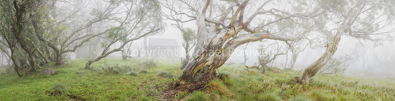 "Fitzgeralds Hut, Falls Creek, Victoria, Australia. <a href=""mailto:michael.boniwell@gmail.com"">Email</a> to order a print or commercial use license."