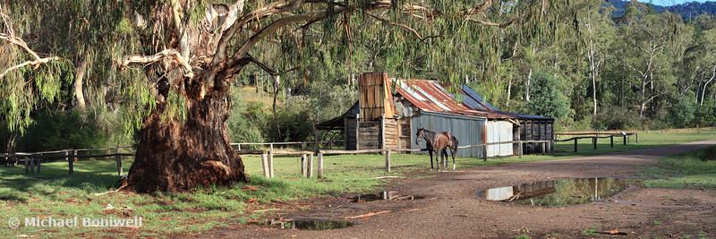 Frys Hut, Howqua Hills, Mansfield, Victoria