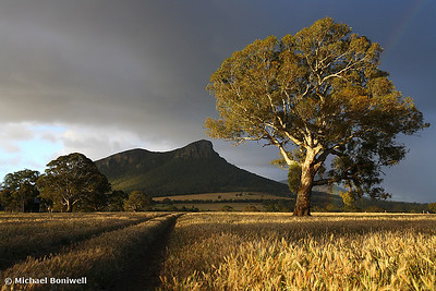 Wild light baths the Grampians, Dunkeld, Victoria, Australia.