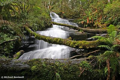 Triplet Falls, Otway National Park. Victoria.