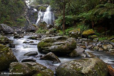 Stevenson's Falls. Otway National. Park. Victoria.