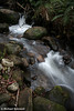 """Mountain Creek"", Mt Bogong. Victoria."