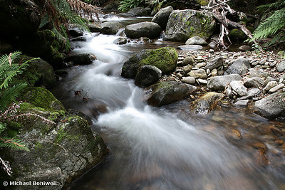 """Mountain Creek"", Mt Bogong, Victoria."