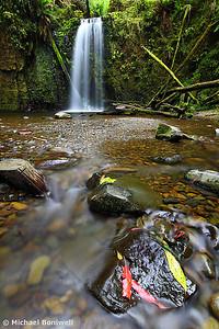 Mainers Falls, Otways National Park, Victoria, Australia