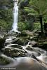 Erskine Falls, Otway Ranges, Victoria.