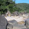 Orpheus Island boulders