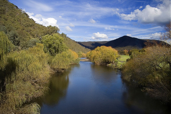 The Mitta Mitta River 2. Taken from the bridge over the river on the road to Dartmouth.