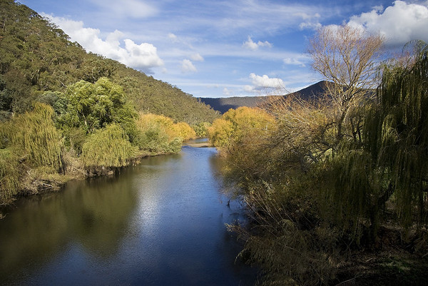 The Mitta Mitta River 1. Taken from the bridge over the river on the road to Dartmouth.