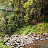 Crystal Shower Falls,  Dorrigo national Park, Skywalk & rainforest walks.