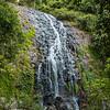 Tristania Falls,  Dorrigo national Park, Skywalk & rainforest walks.