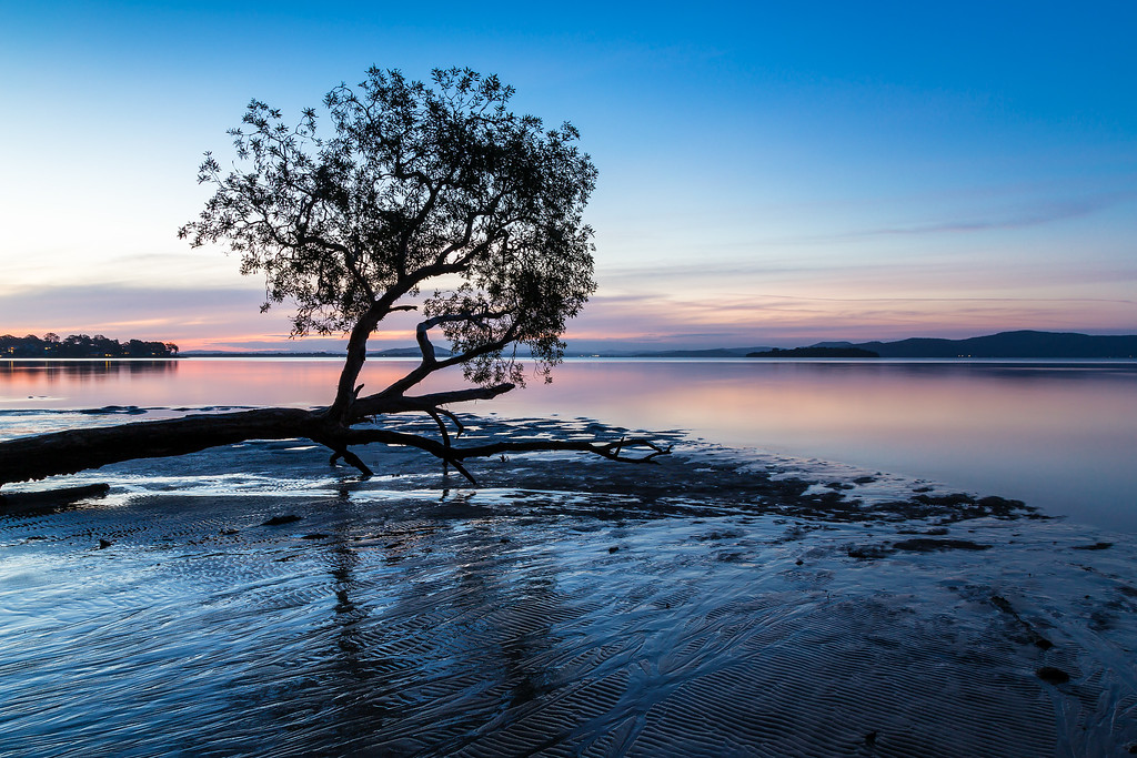 Sunset over Tanilba Bay at low tide Tanilba Bay, Port Stephens