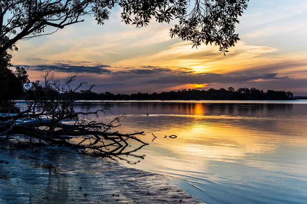 Sunset at the Tilligerry Habitat Reserve Tanilba Bay, Port Stephens