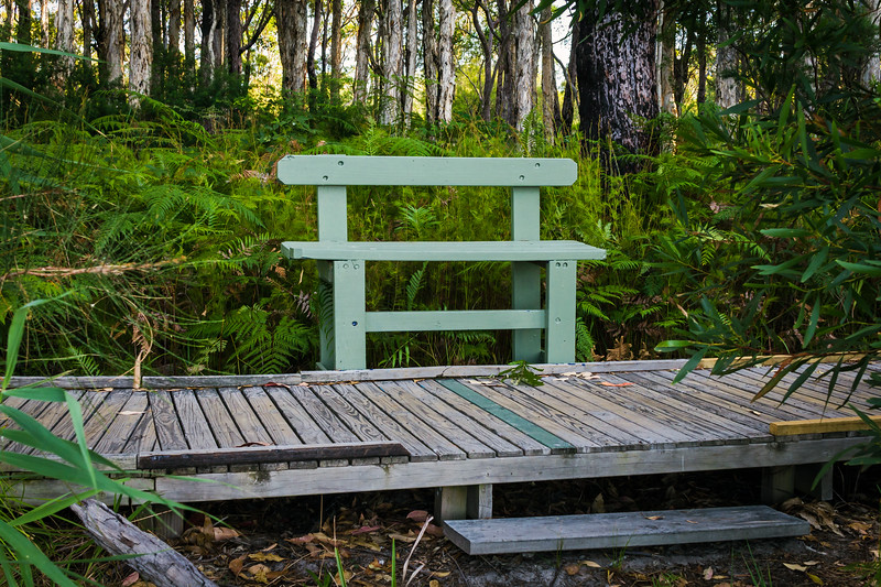 Tilligerry Habitat State Reserve