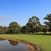 Bankstown_02FWStrip_0297