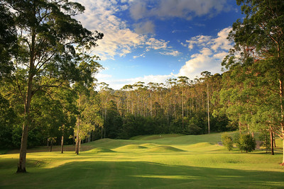 Bonville_05TeeWide_0418