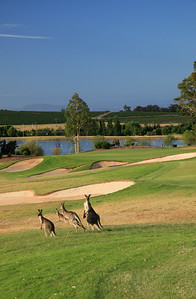 Cypress Lakes Resort, New South Wales, Australia