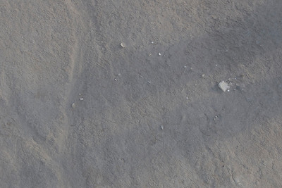 Fossils in the sand - Mungo National Park, New South Wales, Australia.jpg
