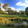 Pymble_11TeeLow_8744