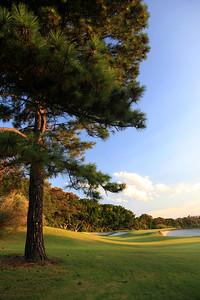 Royal Sydney Golf Club, New South Wales, Australia