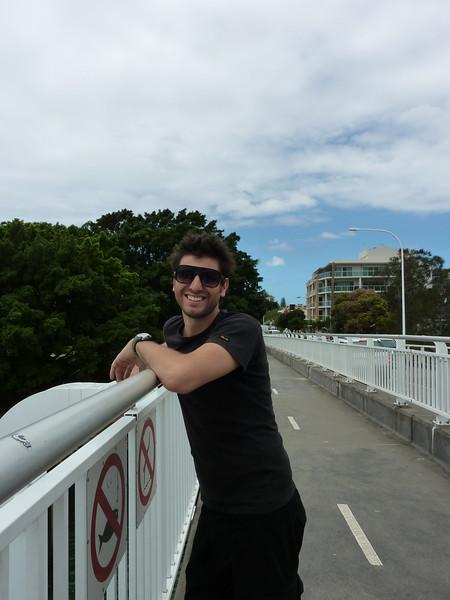 Ant on the bridge