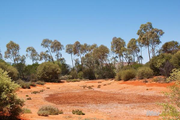desert river environment