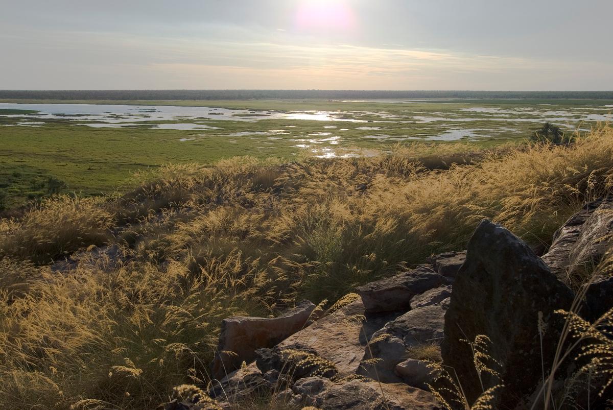 Wetlands of Kakadu National Park, Australia
